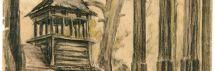 Akmenų ir Rūtų ežerai arba dešimt įdomių ir nežinomų faktų apie Stelmužę ir jos apylinkes