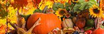 Paskutinį rugsėjo savaitgalį Zarasų Sėlių aikštėje - rudens gėrybių mugė