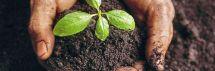 """Kviečiame į konsultacinius mokymus """"Parama investicijoms Į žemės ūkio valdas"""", spalio 18 d."""