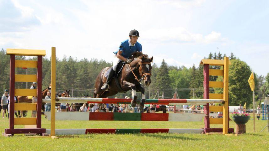 Анталептские лошади