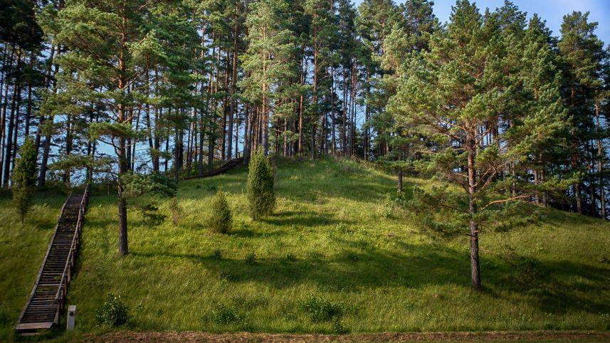 Velikuškių II (an Island) mound