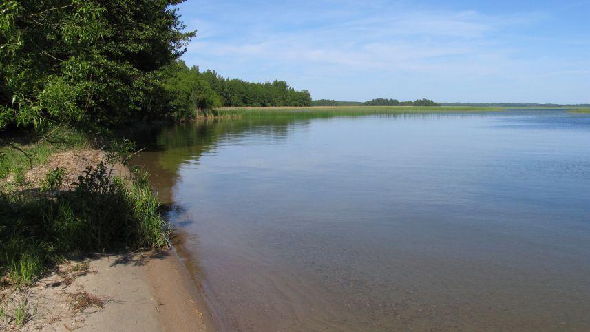 Озеро Друкшяй