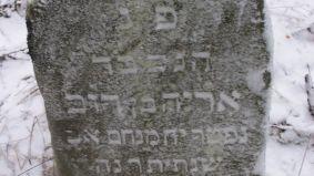 hebrajkalba-kristinaivanovait816344.jpg