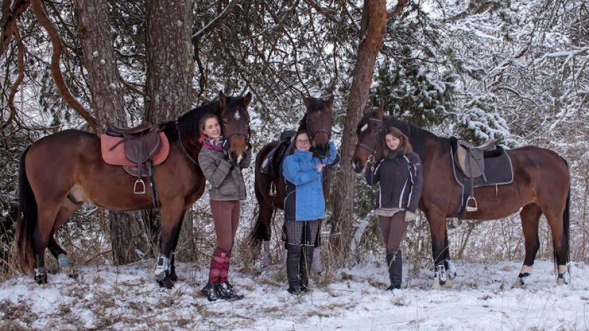 Jodinėjimo ir fotosesijų su žirgais paslaugos Bachmatuose