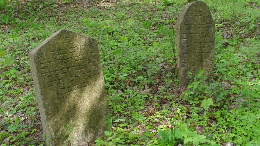 Antalieptė old Jewish cemetery